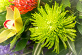 linden-tree-flowers-funeral-product-photography-sussex-8